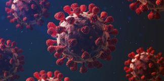 нов сој коронавирус